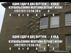Один удар и две вертухи — и над израильскими ментами летают мухи! 12022021 23:56:28 💚ð