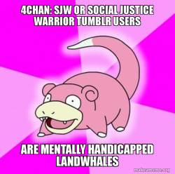 4Chan: SJW or Social Justice Warrior Tumblr Users are Mentally Handicapped Landwhales