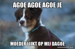 Unsure Dog