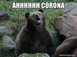 Ahhhh Corona Bear
