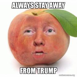 Impeached Donald Trump