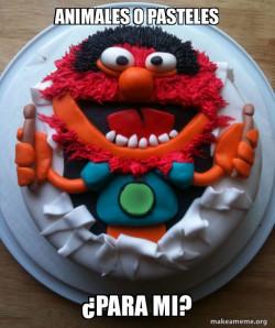 Dia de Tortas