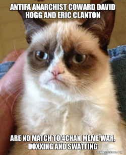Antifa Anarchist Coward David Hogg and Eric Clanton are no match to 4chan Meme War, doxxing and swatting