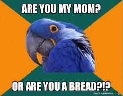 Paranoid Parrot