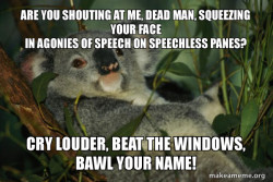 Really Depressed Koala