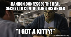 Hulk controls his anger issues by getting a kitty 2