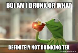 Kermit Drinking Beer