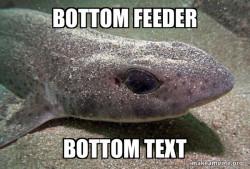 Dirty Joke Dogfish