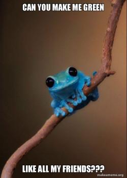 Genetically engineered frog