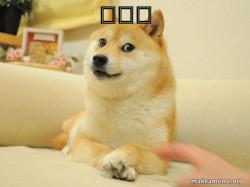 Doge LOL