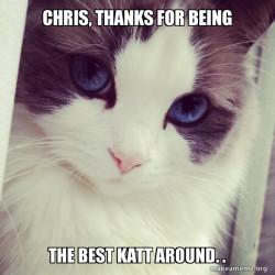 Chris Katt is the cat