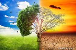 Climate Change / Global Warming