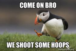 hoopy bird