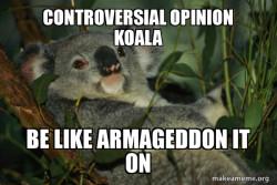 controversial opinion koala