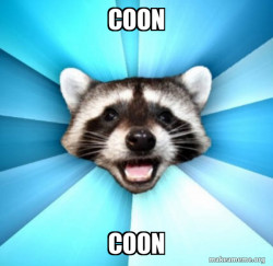 Lame Pun Coon