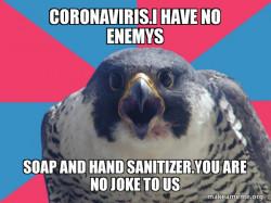 Coronaviris noooooooooooooooooo!!!!!!!!!!!!!!!!!