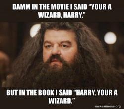 Hagrid screwes up