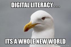 Digital Seagull