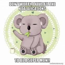 Koala - moni