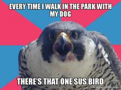 Millennial Falco