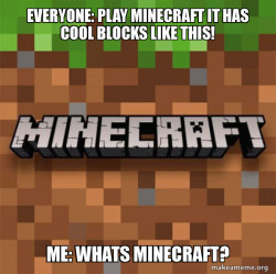 Minecraft players who do not know whats minecraft