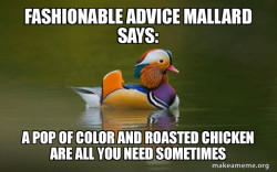 Fashionable Advice Mallard