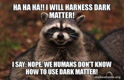dark raccon. made of matter!