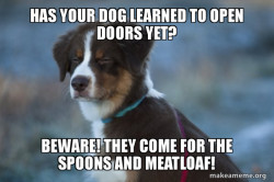 Surreal meme dogs and spoons