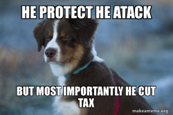 he cut tax