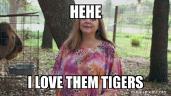 CAROL BASKIN LOVES DEM TIGERS