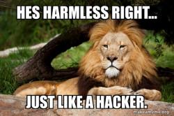 Hacker lion
