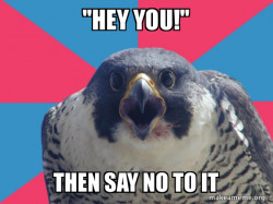 Millennial Falcon