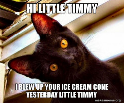 cat talking to little timmy about ice cream cone