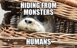 Impending Doom Seal