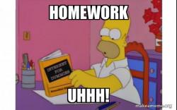 I DONT LIKE HOME WORK