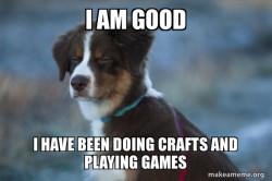 Daily Dog