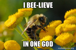 Good Guy Bee