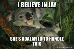Laid Back Koala