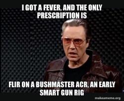 FLIR ON A BUSHMASTER ACR