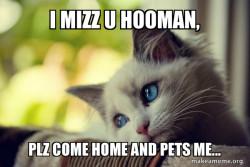 plz come home