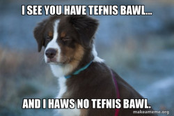 Tefnis bawl meme