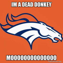 what does the donkey say