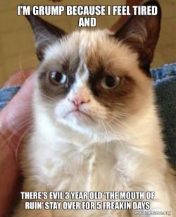 Grumpy Cat no sleep makes even hardest stoics angry