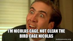 Sarcastic Nicholas Cage