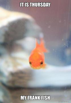 frank fish