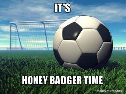 Honey Badger Ball