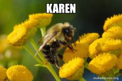 Good Guy Bee