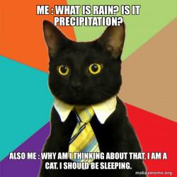 Thinking about Precipitation