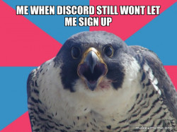 discord memes