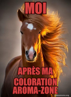 Cheval-cheveux-coloration